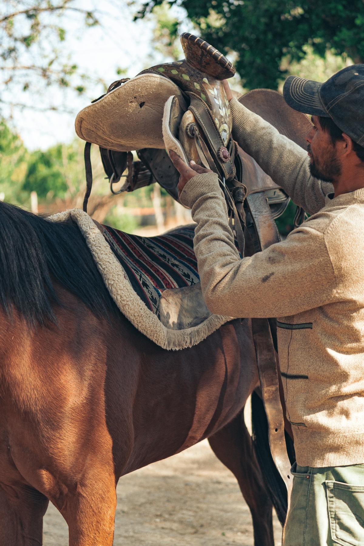 Saddle up Jesus